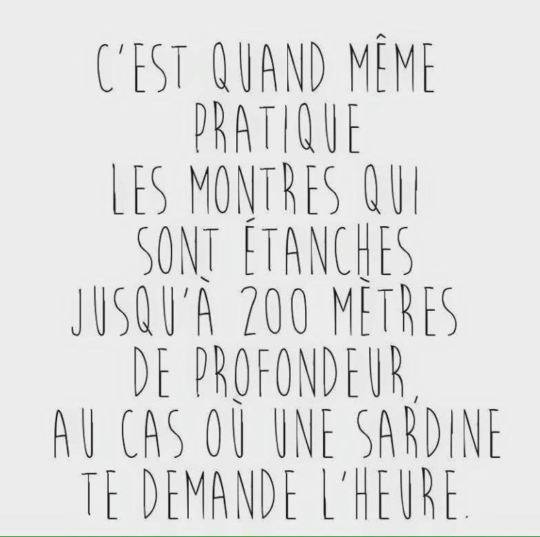 humour - Page 2 12631310