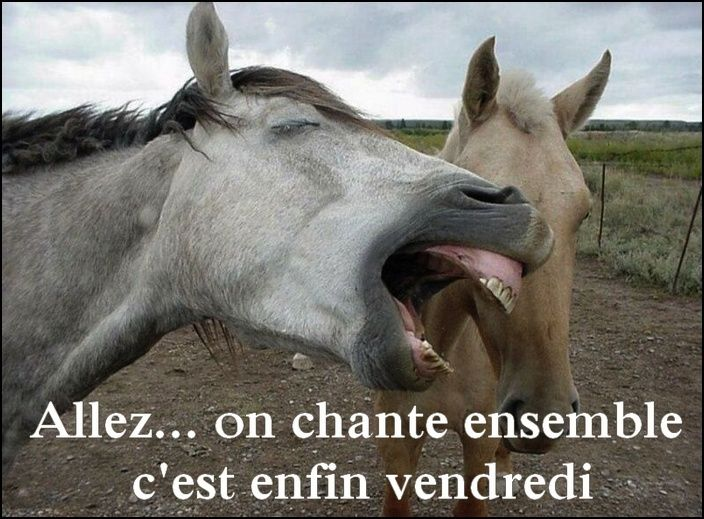 humour - Page 3 12642813