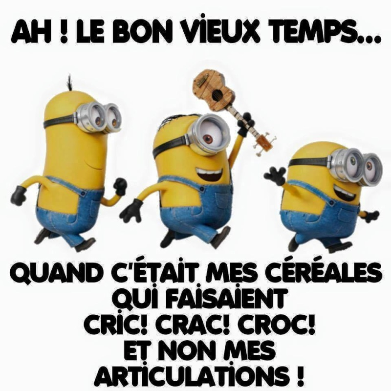humour - Page 40 12642910