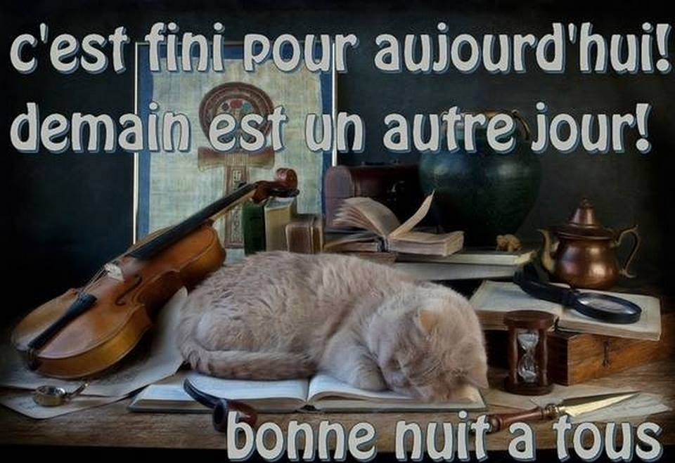humour - Page 3 12643010