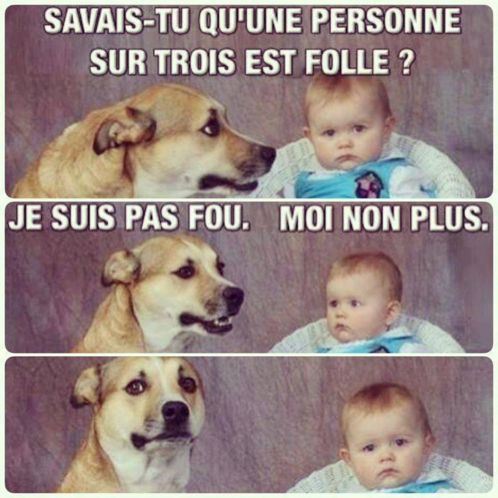 humour - Page 4 12645110