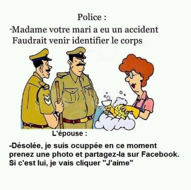 humour - Page 6 12670111