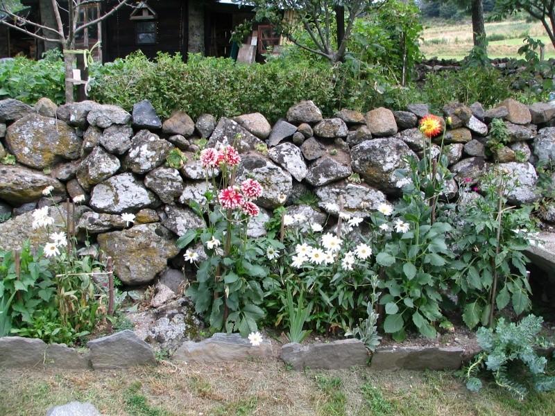 jardin de montagne Img_9710