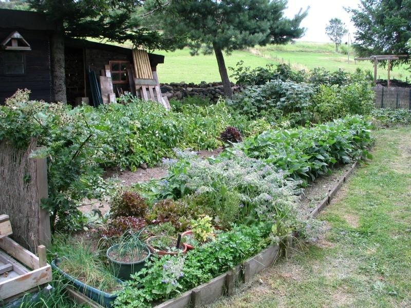 jardin de montagne Img_9711