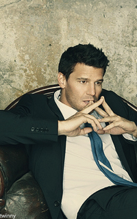 David Boreanaz aka Seeley Booth Dav211