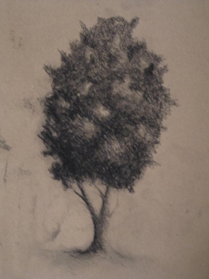 Galerie de pomme-kiwi - Page 3 Img_0111