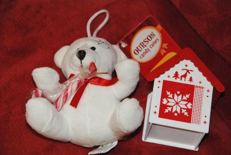 Père-Noël Surprise 2015 - Page 38 Dsc_0019