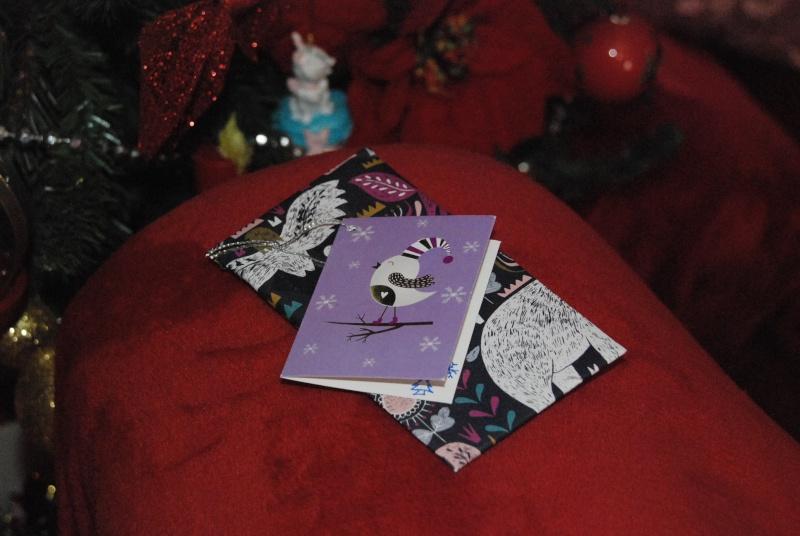 Père-Noël Surprise 2015 - Page 39 Dsc_0023