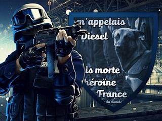 Forum pour paras de toutes origines Diesel13