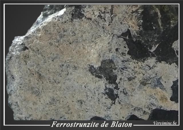 Ferrostrunzite de Blaton (en Belgique) 21-fer12