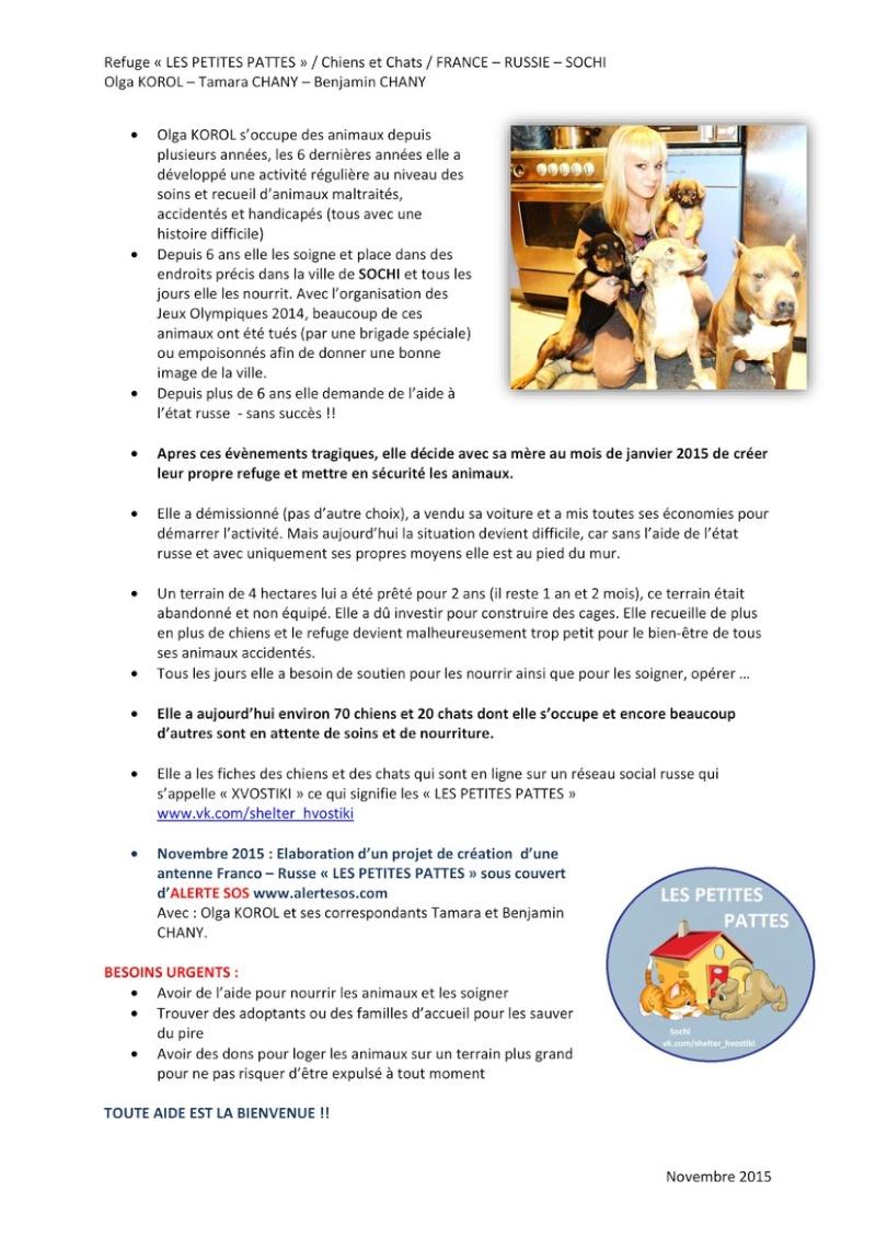 ALERTE SOS :: Les chiens du refuge LES PETITES PATTES de Sochi (Russie) c'est ALERTE SOS qui se chargera du rapatriement des chiens qui seront réservés Histor11