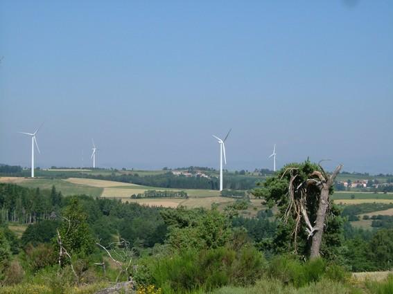 Polémique autour des éoliennes. Alli_f10