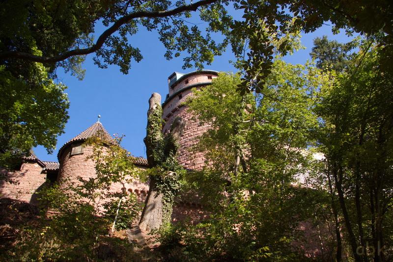 Le Château du Haut-Koenigsbourg Chzete26