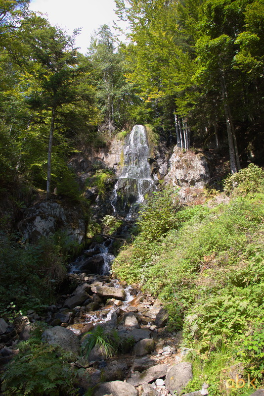 La Cascade du Hohwald - Page 3 Hoh110