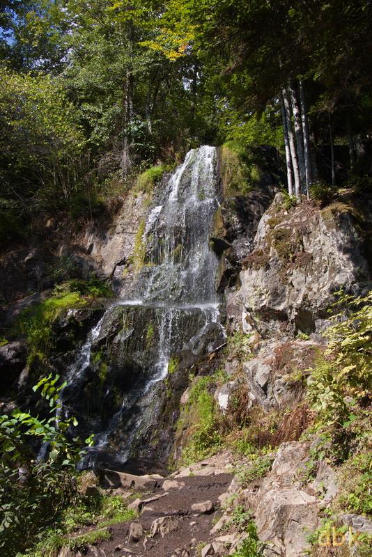 La Cascade du Hohwald - Page 3 Hoh210