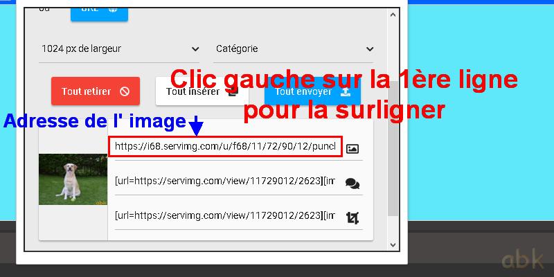 Placer une image/photo dans un sujet Tuto_117