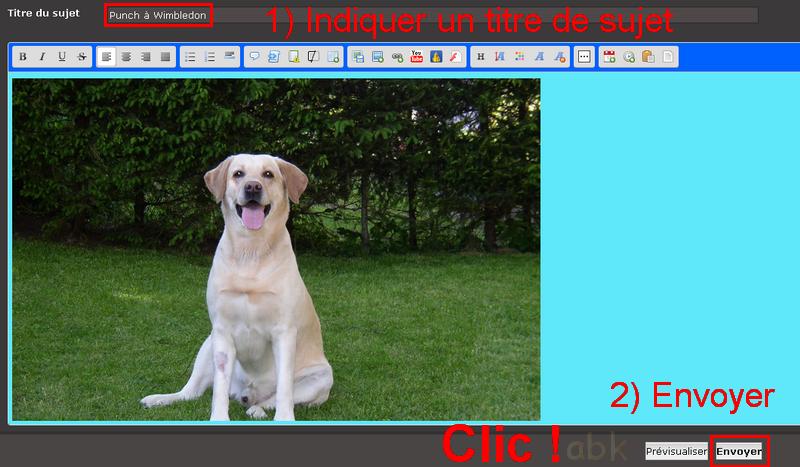 Placer une image/photo dans un sujet Tuto_211