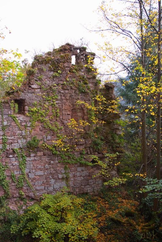 Le Château du Vieux Windstein Vw910