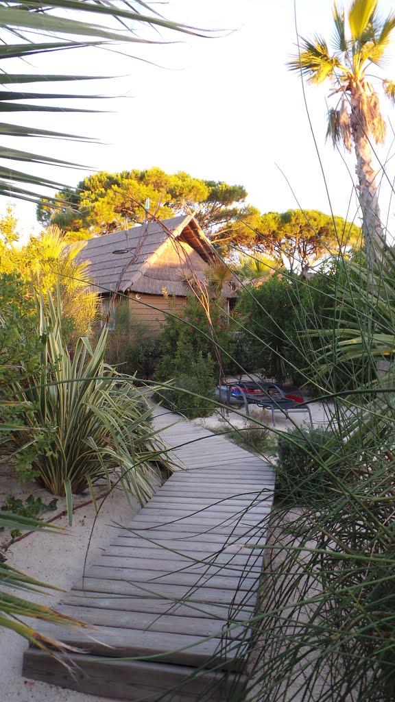 Architecture Tiki : l'ambiance du grand sud 10124210
