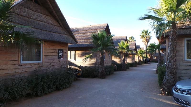 Architecture Tiki : l'ambiance du grand sud 97352210