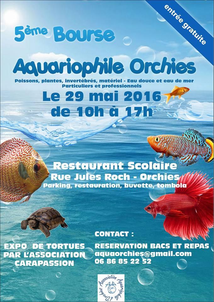 Bourse Orchies  Affich10