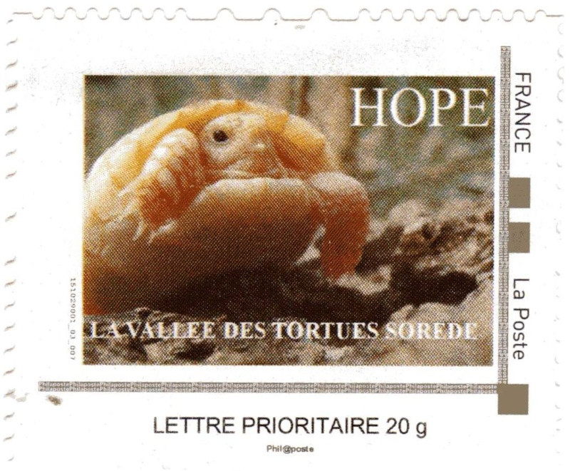 66 - Sorede - La vallée des tortues Hope10
