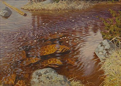 Aperçu sur la peinture scandinave Fjaest17