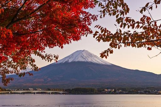 Pré TR : Japon en amoureux en juin  Japon_11