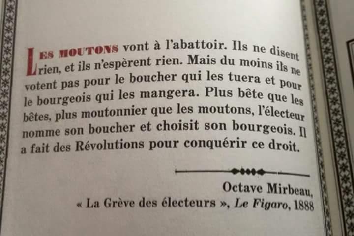 Octave Mirbeau 12301610