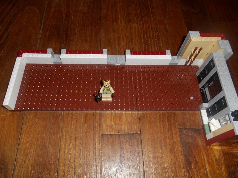 [LEGO] SOS Fantômes - Ghostbusters - Page 4 Dscn2618