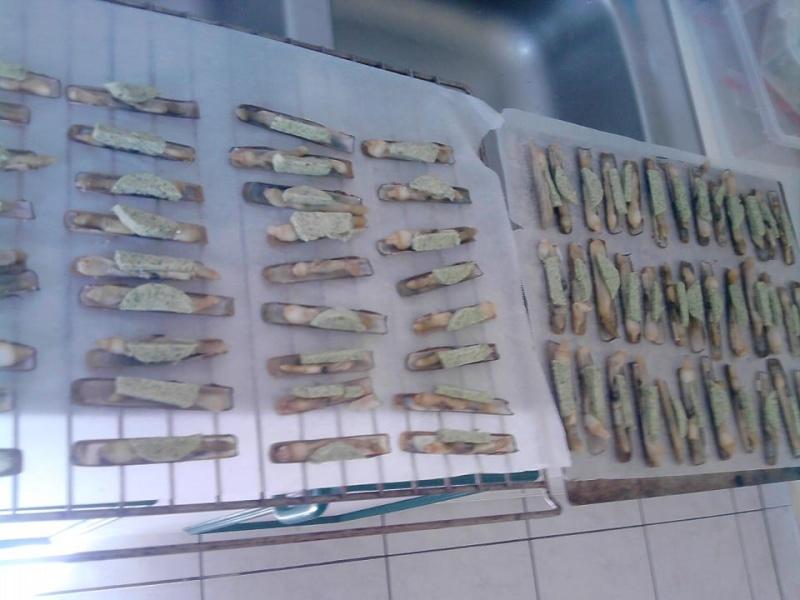 Pêche du couteau 55031910
