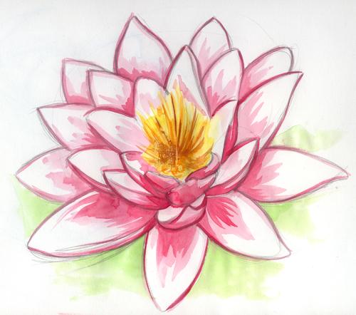Le lotus Fleur_10