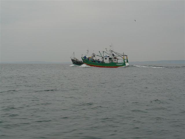 [VIE DES PORTS] Quelques bateaux de pêche (sur nos côtes Françaises) - Page 7 P1020017