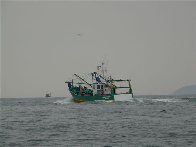 [VIE DES PORTS] Quelques bateaux de pêche (sur nos côtes Françaises) - Page 7 P1020019