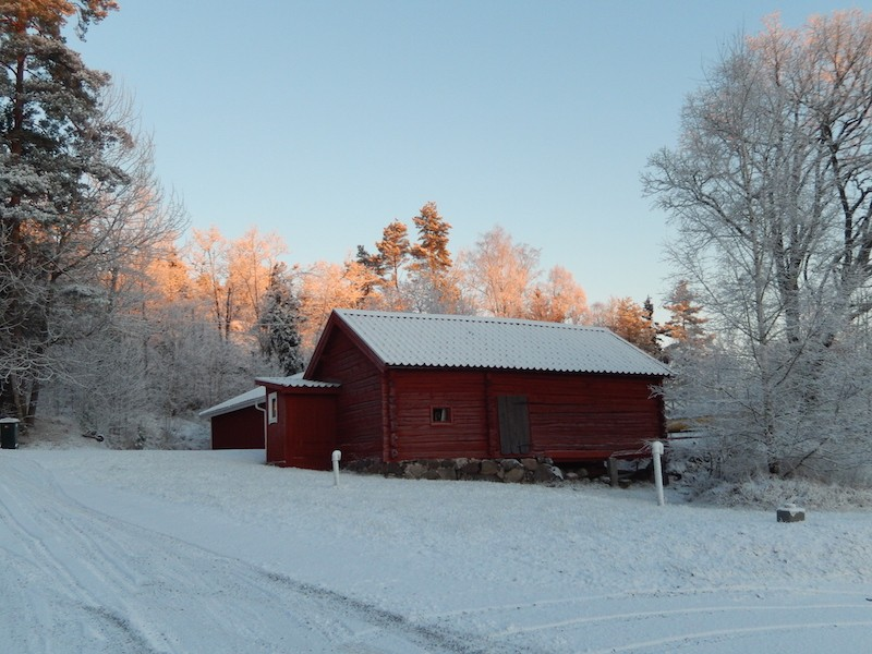 Quelques photos bien hivernales ............ Image22