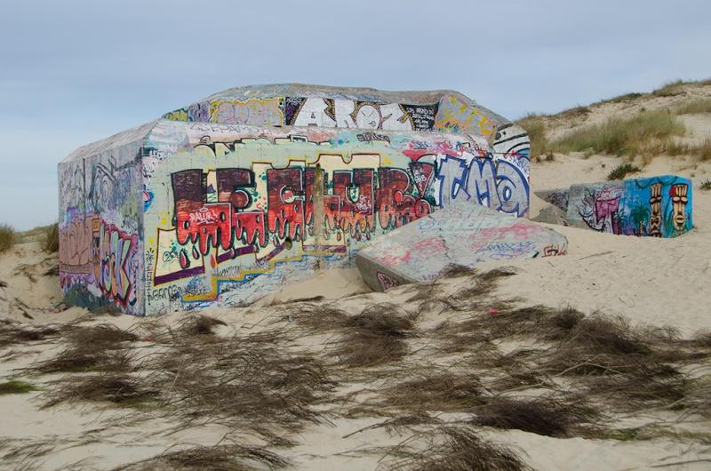 Le Mur de l'Atlantique _dsc1912