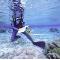 Discutions à travers les spécificités des récifs