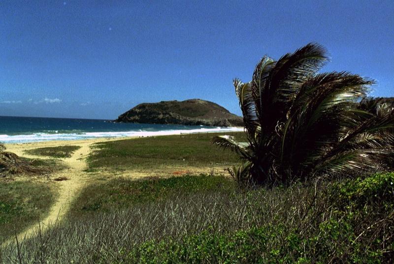 Les îles de la Caraïbe - Page 3 020_1710