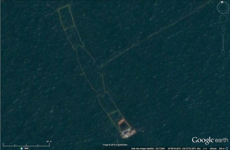 [C'est quoi ] Cote ouest du Kamchatka : pêcherie ou élevage ? Kamtch10