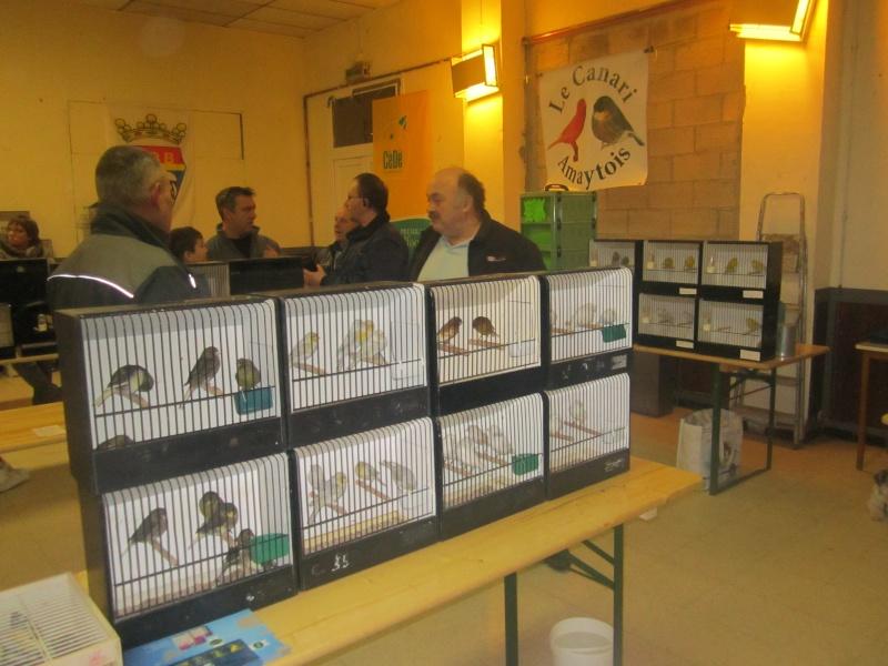 bourses d'oiseaux a flemalle - Page 2 Img_4372