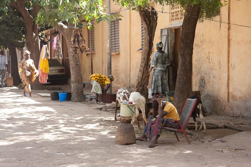 9- Chez Ibrahima Chez_i17