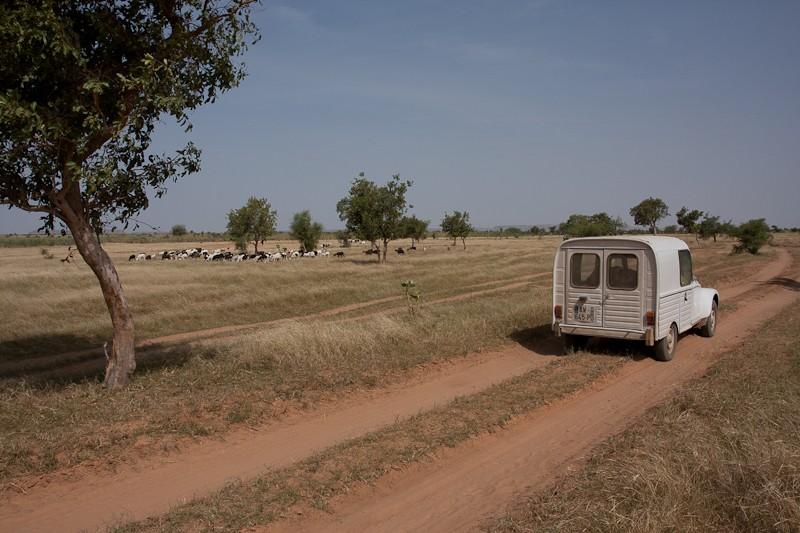 6- Des nouvelles depuis Bamako (1ere partie) Piste_19
