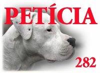 PETÍCIA 282 Petici11