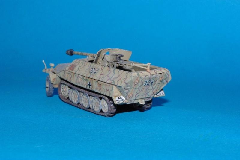 Sdkfz 251/22 mit pak 40 Hasegawa 1/72eme Imgp2815