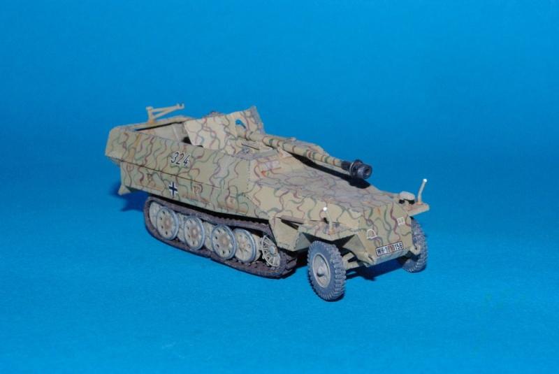 Sdkfz 251/22 mit pak 40 Hasegawa 1/72eme Imgp2816