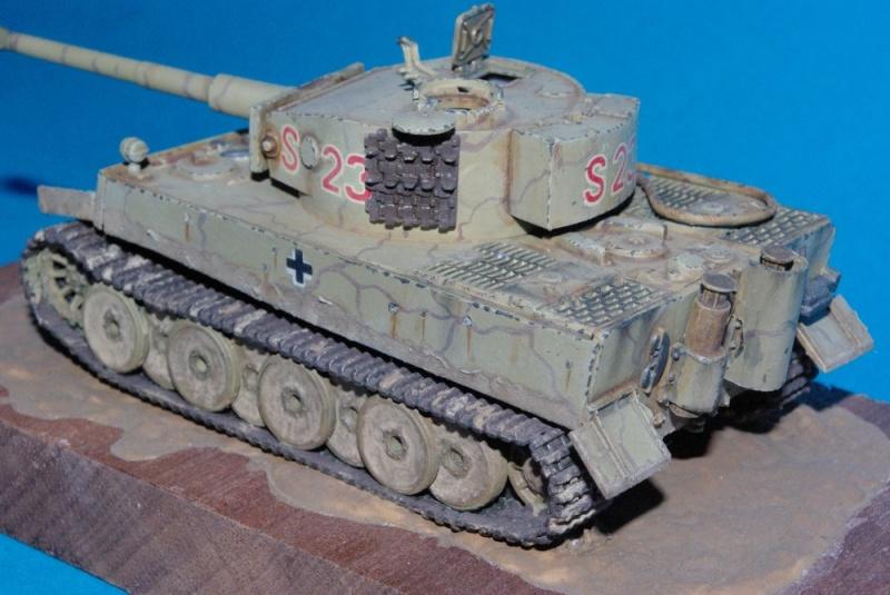 Sdkfz 181 Tiger I ausf E ( plastique Revell ) Imgp2845