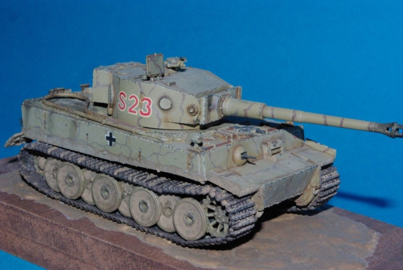 Sdkfz 181 Tiger I ausf E ( plastique Revell ) Imgp2846