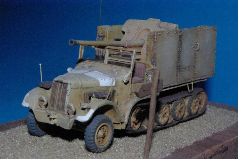 Sdkfz 6 Diana mit 7,62 cm FK 36 r ( résine Milicast ) Imgp2927