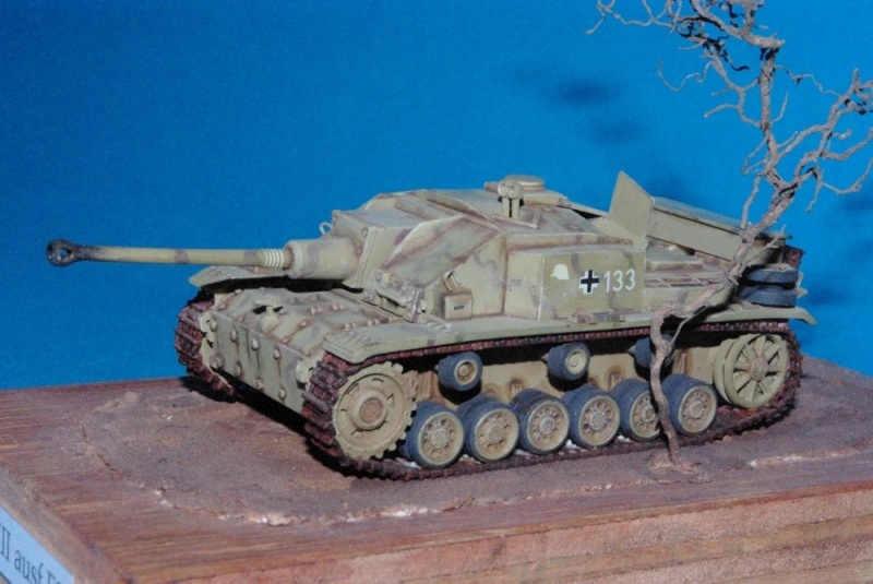 Stug III ausf F8 ( chassis plastique ESCI , casemate scratch , canon résine ALBY ) Imgp2934