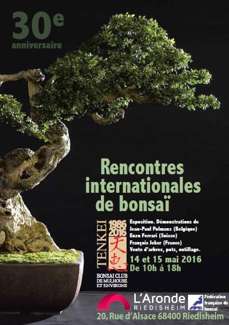 expo Tenkei (Alsace du sud) mai 2016 Tenkei11